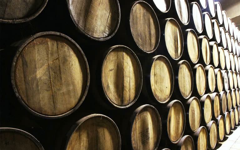 Barrels of Tequila
